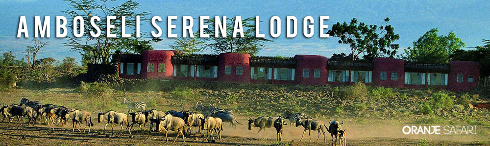 ambo serena lodge