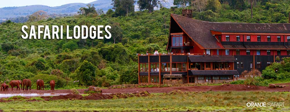 safari lodges header